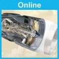 Gas Turbines: Online
