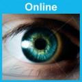 Human Performance: Online