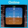 Flight Instruments: Online