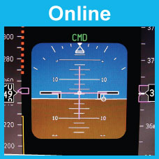 Flight Instruments: Online