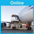 Mass and Balance: Online