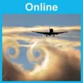 Operational Procedures: Online
