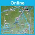 Navigation and Radio Aids: Online